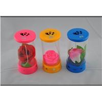 bottle shape speaker  with LED flowers