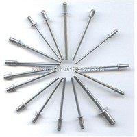 Wholesale Stainless Steel Drawbench Rivet Cup Fix Rivet