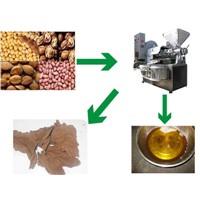 Peanut screw oil press machine, soybean screw oil press machine