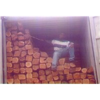 Sell Teak wood logs
