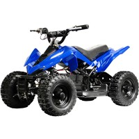 kid mini electric ATV/QUAD