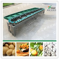 Mango grading machine Fruit sorting machine