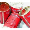 Canned tomato paste 3kg/tin 34-36%
