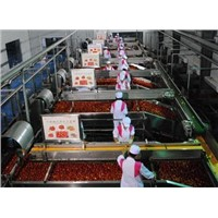 Xinjiang Bulk Tomato Paste Manufacturer for Pizza