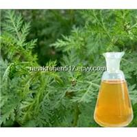 Wormwood Oil/Artemisia Annua Oil