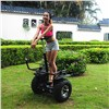 CE/FCC/ROHS approved golf self balancing electric scooter