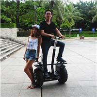 self balancing electric scooter segway