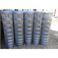 Garssland Wire Fence/ Horizontal Puppy Wire Mesh Fencing