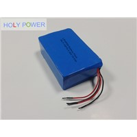 36V 10.5Ah LiFePO4 Battery Pack HLY-12F10.5