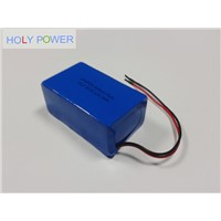 12V 20Ah LiFePO4 Battery Pack HLY-4F20