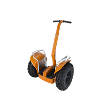 China Segway, Freefeet new product self balancing electric scooter