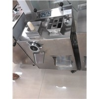 Stainless Steel Meat Mincer Machine