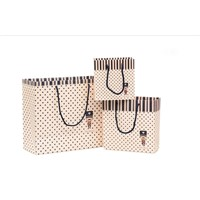 shopping use paper bag