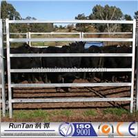 high quality 2100x1800mm welded tubular temporary corral panel fence 6 bar round horse yard