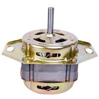 Washing Machine Motor in AC Motor