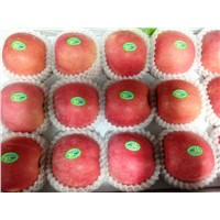 Shandong Fresh Fuji Apple