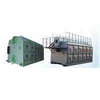 Double drum vertical chain grate steam boiler