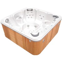 Balboa Control System Jacuzzi Hot tub