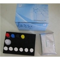 Human Growth Hormone Relasing Factor (GHRF) ELISA Kit