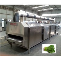 IQF liquid nitrogen cryogenic freezer for onion,rasphberry