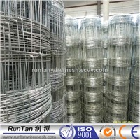 China Factory electro galvanized/hot dipped galvanized/PVC cattle fence(factory)