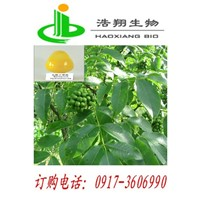 Berberine Hydrochloride CAS#633-65-8