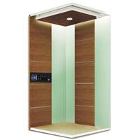 Villa elevator BV-M001