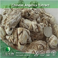 Angelica Sinensis Extract(1% Ligustilide) In Hot Selling