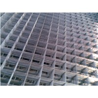 Galvanized 14 gauge Wire Mesh ( Galvanized before or after welded ISO 9001)
