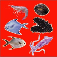 Frozen marine food products