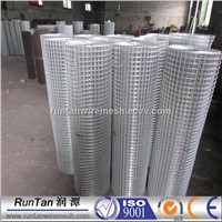 galvanized welded wire mesh/galvanized welded wire mesh panel/galvanized welded wire mesh roll