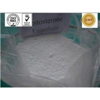 Testosterone Enanthate/ bodybuilding / Testosterone Steroid Hormone / CAS 315-37-7