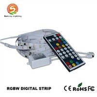 Digital Addressable Magic Colorful RGBW LED Strip