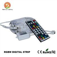 Digital Addressable Magic Colorful RGBW LED Strip