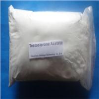 Testosterone Acetate Powder Anabolic Steroid Hormone Raws