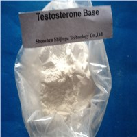 Testosterone Base Male Hormone for Bodybuilder Anabolic Steroid
