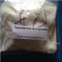 Testosterone Isocaproate Androgenic Performance Enhancing Drugs Best Steroids