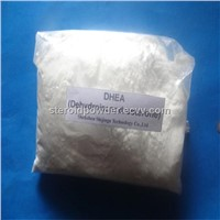 Dehydroisoandrosterone DHEA Steroid Powder Anabolic Androgenic Steroid