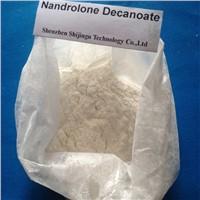 Deca Durabolin / Nandrolone decanoate Powder
