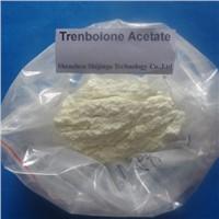 Finaplix-h Trenbolone Acetate Anabolic Steroid powder