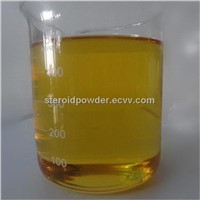 Bodybuilder Testosterone Enanthate Test E Muscle Building