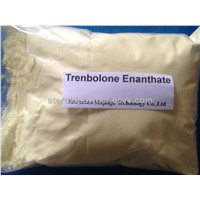Trenbolone Enanthate Bodybuilding Anabolic Steroid Anabolic Hormone