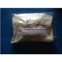 Testosterone Isocaproate Testosterone 17-isocaproate Steroid Powder