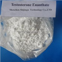 Raw Testosterone Enanthate Powder USP Anabolic Steroid Powder Testosterone Enanthate