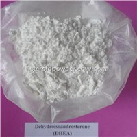 Deca Durabolin 250mg Steroids Powder Online Price Injectable Nandrolone Decanoate