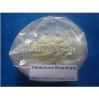 Trenbolone Acetate Trenbolone Enanthate Boldenone Undecylenate Stanozolol  Winstrol Oxandrolone