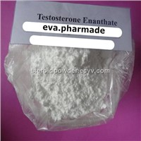 Testosterone Enanthate Steroids Powder Muscle Growth Bodybuilding