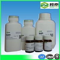 Nadph Nicotinamide Adenine Dinucleotide Phosphate CAS No. 2646-71-1