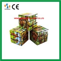 Plastic magic cube,custom magic puzzle cube