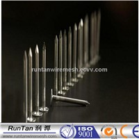 factory directly sale common iron nail and steel nail